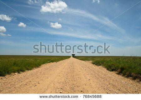 Дорога в Серенгети