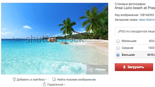 Превью на Shutterstock