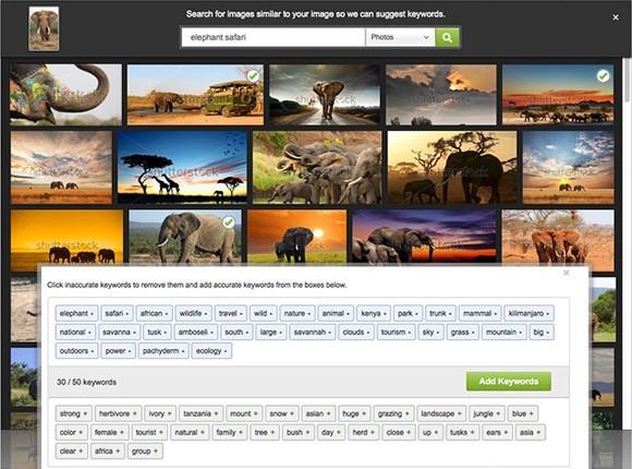 Ключевые слова на фотобанке Shutterstock