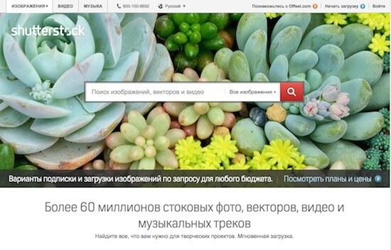 Как скачать с Shutterstock