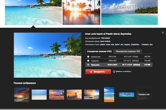 Как скачать фотографию с Shutterstock