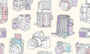 Бесплатные фотографии на Adobe Stock
